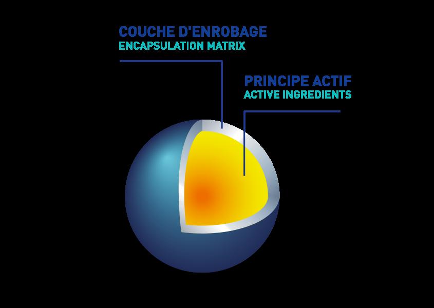 principe de microencapsulation avec couche d'enrobage et principe actif